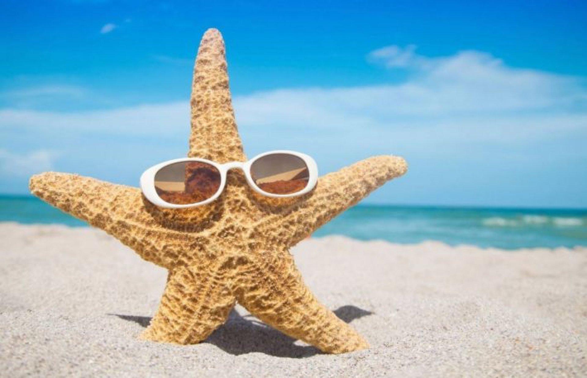 Смешные картинки про лето море