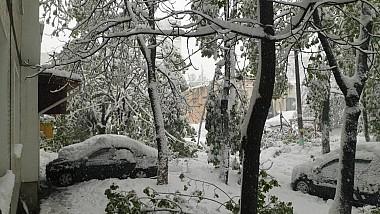 Igor Dodon a cerut ARMATEI să se implice în soluționarea problemelor cauzate de ninsoare