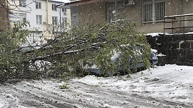 Potop alb în Capitală. Străzile continuă să fie blocate de nămeţi şi peste 3.000 de copaci, dobărâţi la pământ