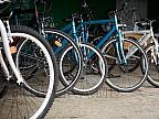 Spectacol de zile mari la capătul pământului! Patru biciclişti au făcut show în nordul Canadei