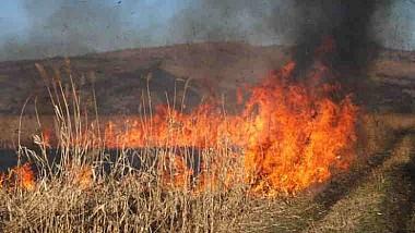 Cod Galben de incendii, care vizează fâșiile forestiere și culturile agricole