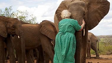 Orfelinatul pentru elefanții abandonați din Kenya