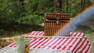 Vlad Burac şi Tatiana Plăcintă au ieşit la picnic în … emisie directă. Vezi cum au sarbătorit prezentatorii Ziua Internaţională a Picnicurilor