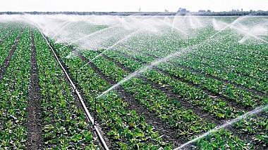Agricultorii din ţară salută modificările aprobate de Guvern, care facilitează accesul la apele de suprafață pentru irigarea terenurilor