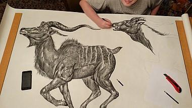 Geniu în pictură la doar 15 ani. Puștiul surprinde în desenele sale detalii fascinante, care de multe ori pot fi observate doar cu ajutorul lupei