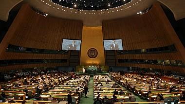 Demersul ţării noastre la ONU demonstrează curajul politic al actualei guvernări