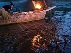 La pescuit cu cormoranii