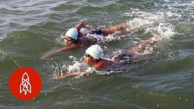 Cele mai devotate înotătoare